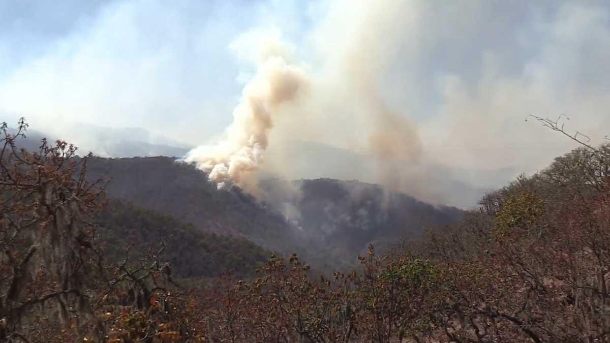 En Zacatecas, incendio se expande; alistan apoyo otros estados
