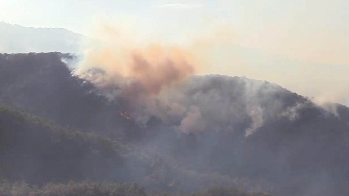 Zacatecas: Incendio arde en sierra de Valparaíso desde hace 15 días