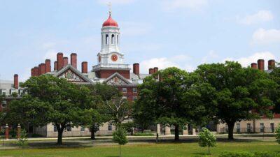 Milagros Costabel Harvard