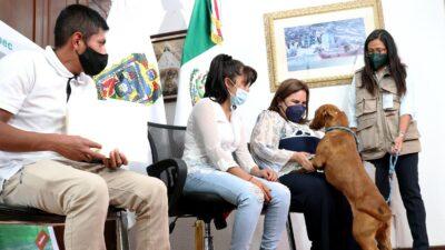 Spay, perrito que cayó en megasocavón de Puebla, vuelve a casa