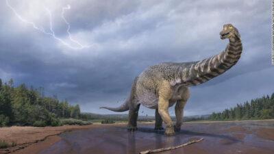 Descubren la especie de dinosaurio más grande de Australia, esto medía