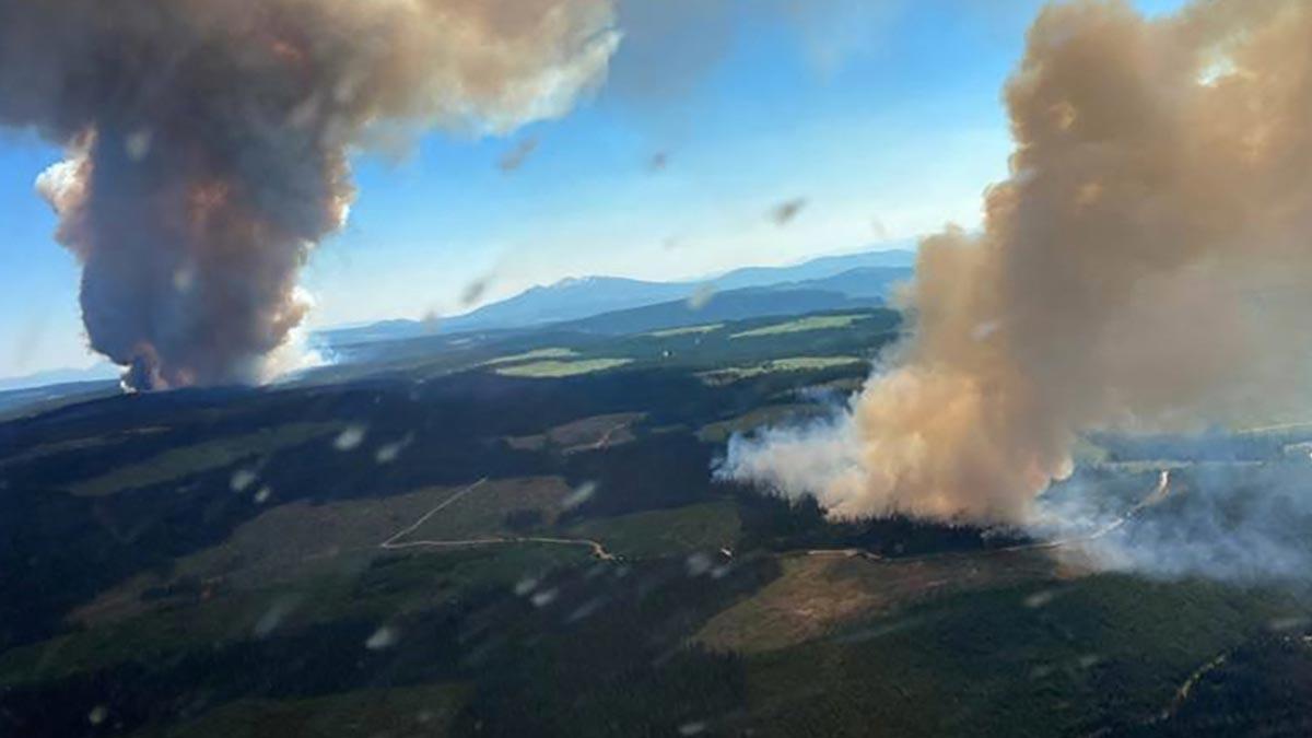 Incendios forestales en Estados Unidos dejan cielos nubosos en Nueva York