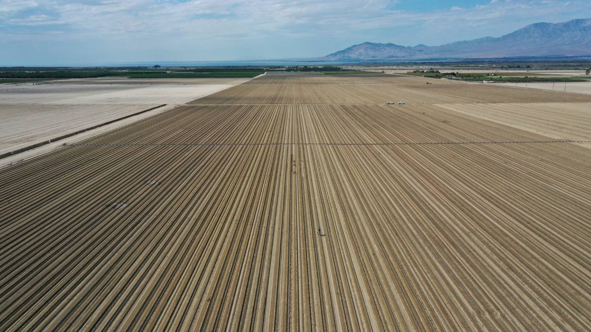 En imágenes: sequía y ola de calor azotan a California, en EU