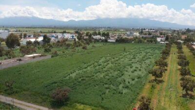 Socavón en Puebla: Ahora aparecen extrañas figuras en sembradío