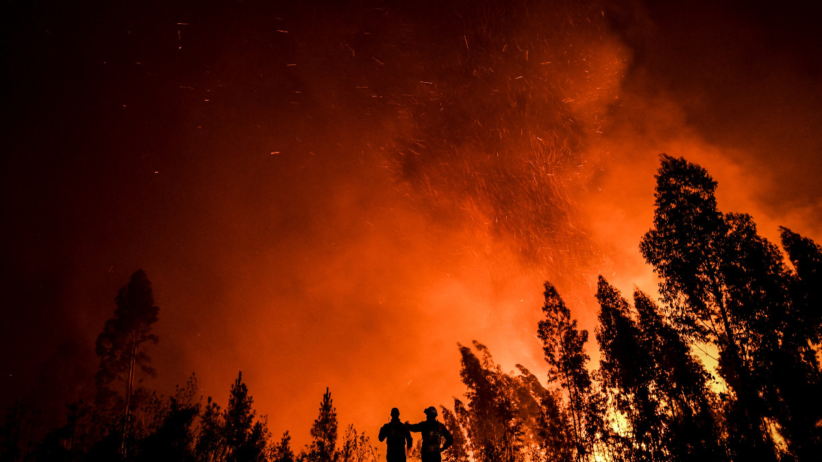 Calentamiento global ocasionaría desastres sin precedentes para año 2030: informe