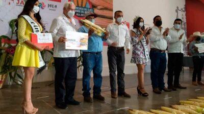 Nayarit: el elote más grande del mundo está en Jala