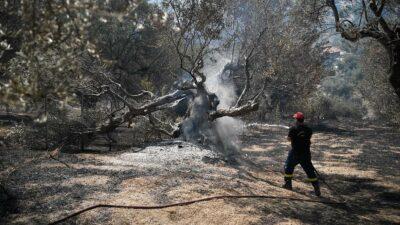 Grecia: incendio devora el noroeste de la península del Peloponeso