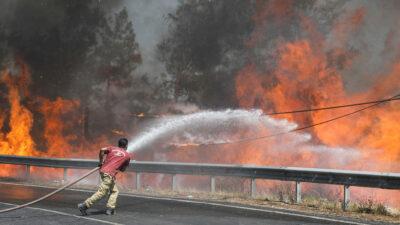 Incendios forestales azotan sur de Europa; evacuan a cientos en estos países