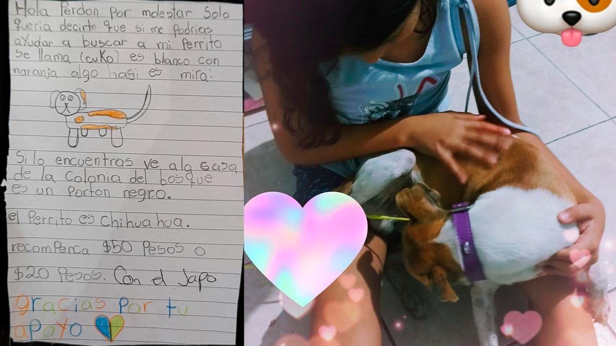 Morelos: perrito se pierde y niña ofrece 50 pesos por informes