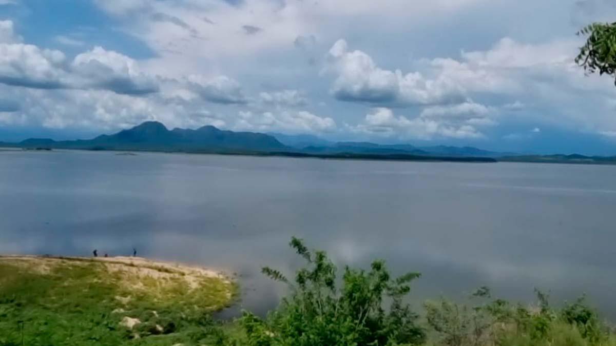 Sinaloa: Preocupa desaparición de Narnia