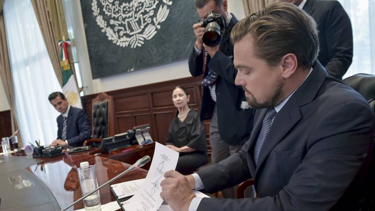 México vaquita marina DiCaprio