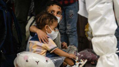 Niños que salieron de Afganistán se envenenan tras comer hongos en Polonia
