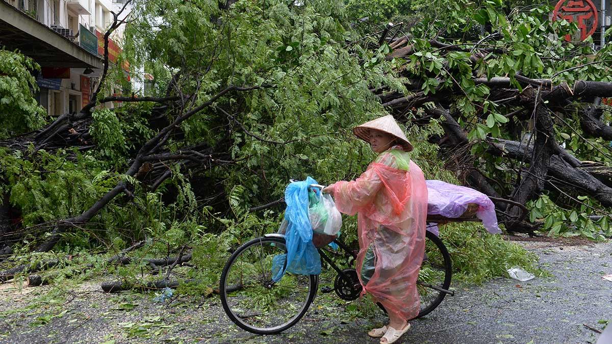 La tormenta tropical Mirinae podría provocar fuertes vientos, olas altas e inundaciones. Foto: AFP