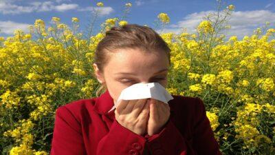 ¿Cuáles son las causas de las alergias en el otoño?