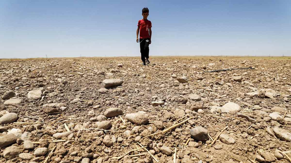 Crisis climática forzará a huir a millones de mexicanos: BM