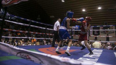 Tamaulipas boxeadores ring