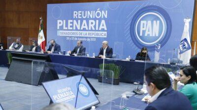 PAN: no se firmó un acuerdo político con Vox, partido de España