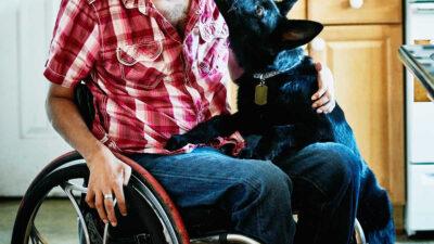 Hombre en silla de ruedas rescata a su perrito de jauría en Rusia