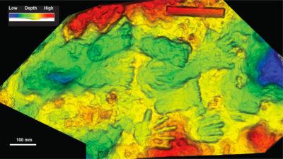 Descubren huellas de niños más antiguas del mundo