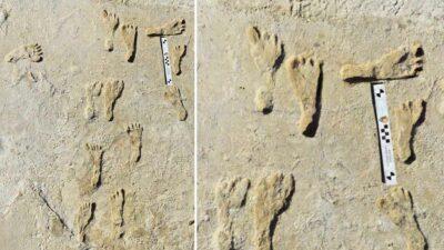 Encuentran las huellas más antiguas de América