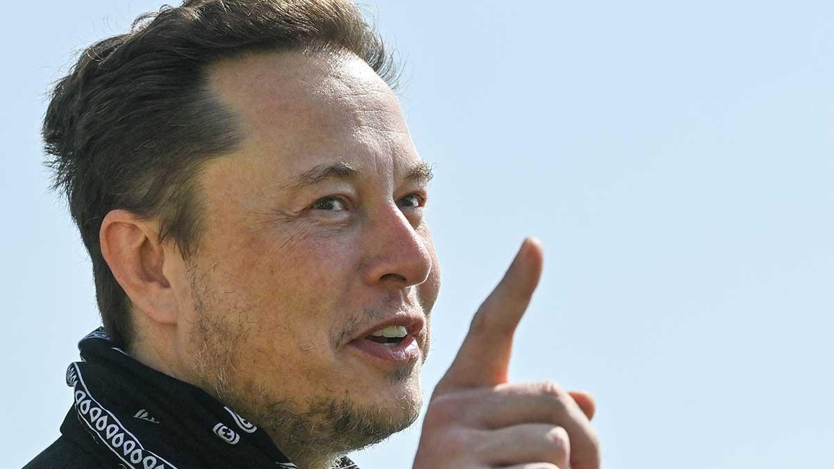 Elon Musk: no es necesario ir a la universidad para aprender cosas