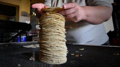 Tortilla: ¿Cuál es el precio del kilo en cada estado?