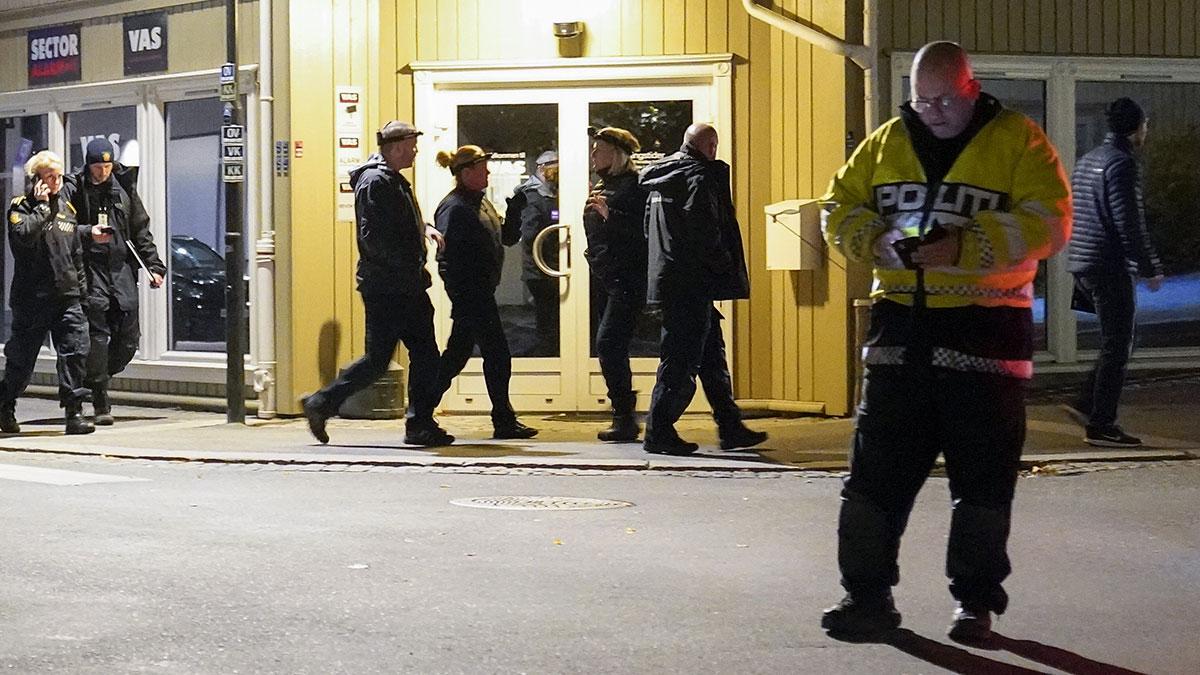 Noruega: con arco y flechas, hombre mata a 5 personas