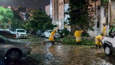 Rick deja en Acapulco socavón y la caída de árboles y postes