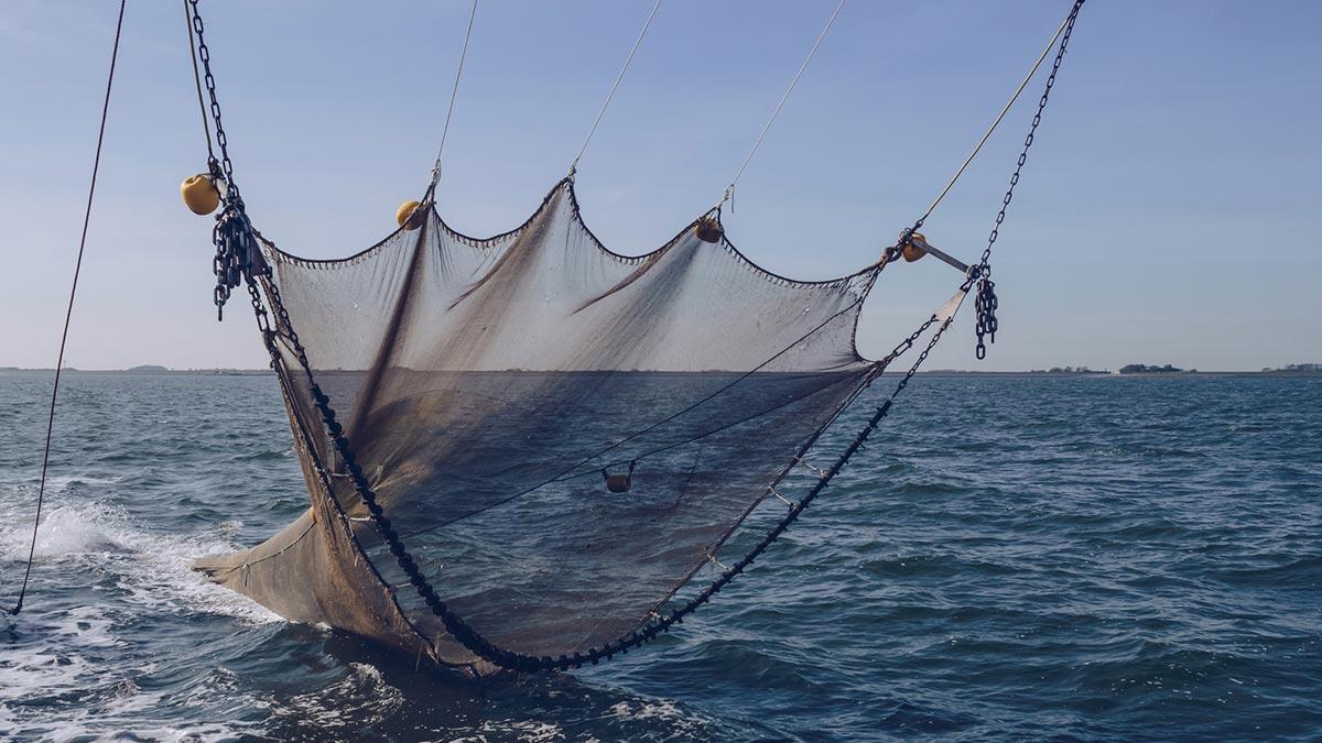 Sinaloa: Barco saca auto del mar en Mazatlán