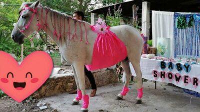 Yucatán: Celebran baby shower a yegua y se hace viral