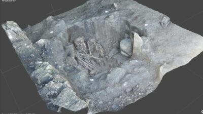 """Tren Maya """"descubre"""" más de dos mil vestigios arqueológicos"""