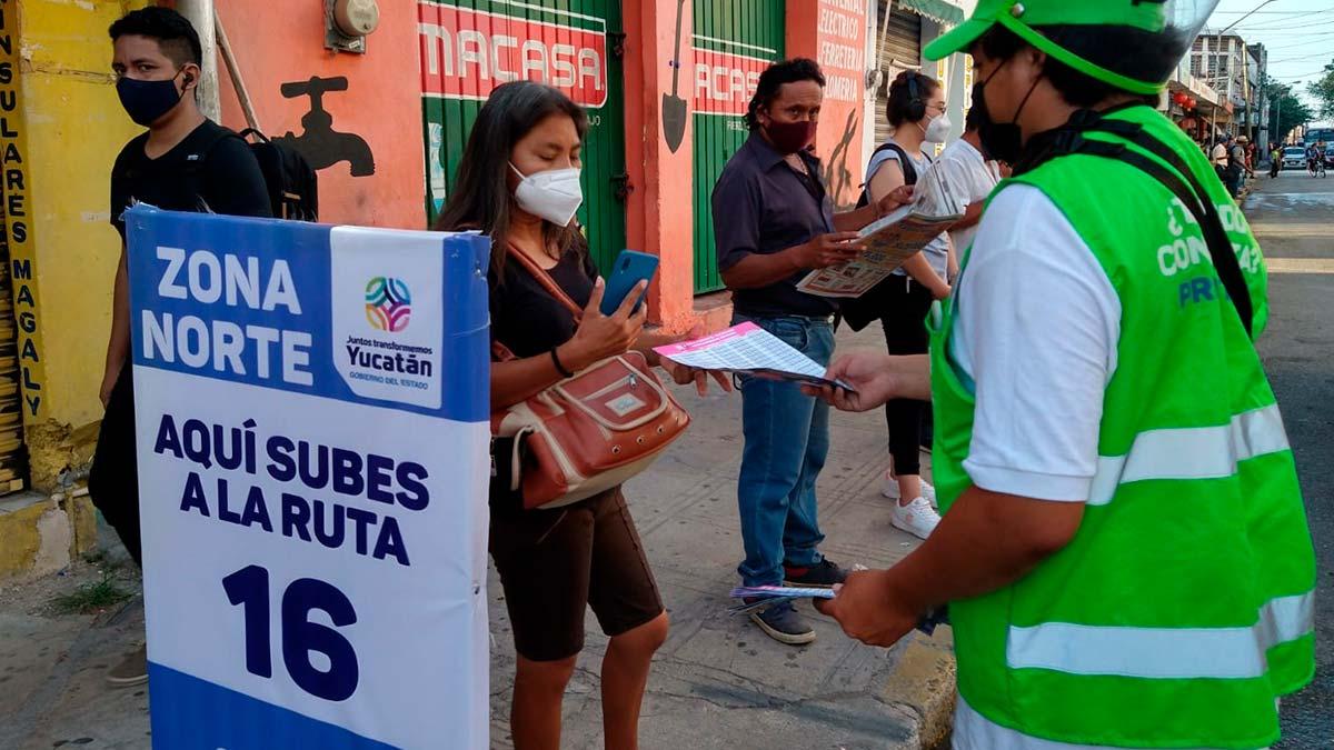 Yucatán: cómo funcionan y dónde hay paraderos